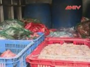 Thị trường - Tiêu dùng - Bắt vụ vận chuyển 320kg nội tạng bò đang phân hủy
