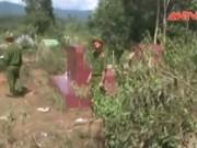 Video An ninh - Thiếu niên giở trò đồi bại rồi giết người trong nghĩa địa