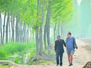 Chuyện lạ - Hai cụ ông khuyết tật dành 10 năm trồng hơn 10.000 cây xanh