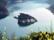 """Du lịch - Kì lạ đảo rùa  chỉ """"hiện hình"""" vào mùa xuân"""
