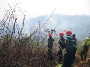Tin tức Việt Nam - Gia Lai: Cháy lớn, thiêu rụi 3ha rừng trên núi Hàm Rồng