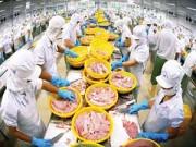 Thị trường - Tiêu dùng - Quý 1/2015: Xuất khẩu thuỷ sản có thể giảm 30%