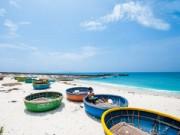 Du lịch - Những điểm đến hút hồn du khách trên đảo Lý Sơn