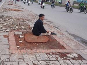 10 bài thơ vui, clip hát chế về vụ cưa cây ở Hà Nội