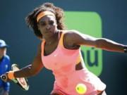 "Tennis - Serena – Bellis: ""Vùi dập"" đồng hương (V3 Miami)"