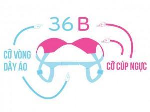 Thời trang - Cách đo kích cỡ áo ngực đúng chuẩn quốc tế