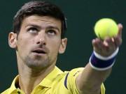 Thể thao - Djokovic - Brown: Năm mới ra oai (V1 Qatar Open)