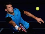 Tennis - Doha, Brisbane ngày 4: Raonic, Dimitrov tiến bước