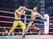 """Thể thao - """"Hoàng tử Muay Thái"""" sẽ tái đấu """"Đệ nhất Thiếu Lâm"""""""