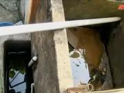 Thị trường - Tiêu dùng - Bên trong làng nghề hơn 20 năm chưa biết mùi nước sạch
