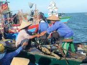 Tin tức trong ngày - Tàu Trung Quốc bao vây phá ngư cụ tàu cá Việt Nam
