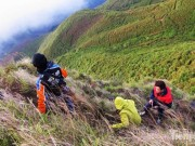 """Du lịch Việt Nam - Dân phượt rủ nhau lên """"lưng khủng long"""" Tà Xùa săn mây"""