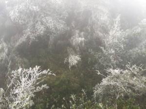 Tin tức trong ngày - Miền Bắc có khả năng xảy ra băng giá và mưa tuyết
