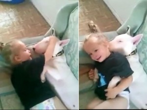 Bạn trẻ - Cuộc sống - Clip: Bé làm đủ trò với cún cưng siêu dễ thương