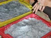 Thị trường - Tiêu dùng - Ngư dân trúng đậm cá cơm mồm tinh kiếm chục triệu ngày
