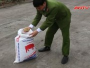 Thị trường - Tiêu dùng - Quảng Ninh: Bắt 7 tấn thức ăn chăn nuôi chứa chất cấm