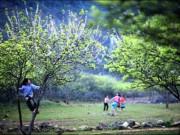 Du lịch - Mùa Xuân sớm trên những cung đường phượt Hà Giang