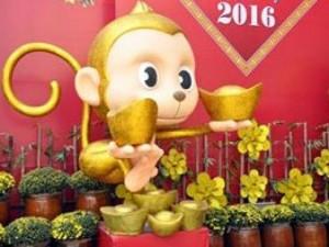 """Tin tức trong ngày - Khỉ """"cầm  vàng"""" xuất hiện trên phố Sài Gòn"""