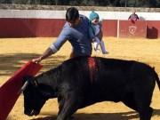 Thể thao - Rùng rợn: Đẫu sĩ vừa bế con, vừa tránh bò tót