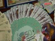 """Video An ninh - Người Việt chứng tỏ đẳng cấp bằng tiền lì xì """"đẹp"""""""