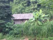Video An ninh - Hành trình phá án: Thảm án bên rừng già (P.1)