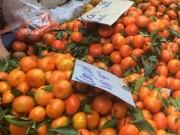 Thị trường - Tiêu dùng - Đủ chiêu lừa thực phẩm quê qua mạng