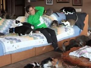 Phi thường - kỳ quặc - Người phụ nữ 'cuồng mèo', nuôi 1.100 con trong nhà
