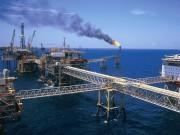 Tài chính - Bất động sản - Nhiều công ty con của Tập đoàn Dầu khí đang chịu lỗ