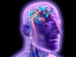 Công nghệ thông tin - Hệ thống máy tính giúp đọc suy nghĩ con người bằng điện não