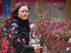 Tin tức trong ngày - Ảnh: Sắc màu chợ hoa xuân phố cổ ngày cận Tết
