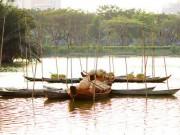 Du lịch Việt Nam - Ngắm cảnh làng quê Việt Nam ở khu nhà giàu