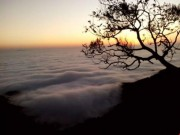 """Du lịch - Tết này lên Tam Đảo """"săn"""" mây"""