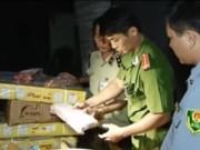 """Video An ninh - Chặn 300 kg thịt trâu thối """"nhập khẩu"""" tung ra chợ Tết"""