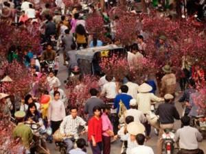 Chợ hoa Hà Nội: Từ Hàng Đường đến Hàng Lược