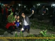 Du lịch - Về làng Lý Nhân vác đèn pin đi chợ mua cau Tết