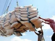 Thị trường - Tiêu dùng - Xuất khẩu gạo năm 2016 sẽ như thế nào?