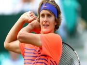Thể thao - Alexander Zverev: Ngôi sao tương lai của làng tennis