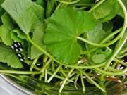 Sức khỏe đời sống - Nguy hại của những loại rau nhà bạn vẫn ăn hằng ngày