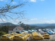 Thị trường - Tiêu dùng - Hà Nội: Taxi, xe khách cam kết giảm giá cước theo xăng