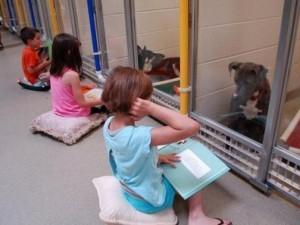 Thế giới - Mỹ: Trẻ em thích đọc sách cho chó