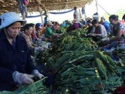 Tin tức trong ngày - Nhộn nhịp xóm thuốc lào Sài Gòn