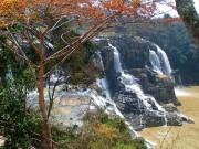 Tin tức trong ngày - Thêm du khách nước ngoài tử nạn khi tắm thác gần Đà Lạt