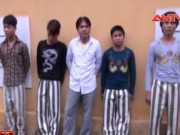 """Video An ninh - Giải cứu 2 thanh niên bị """"vàng tặc"""" bắt trói, tra tấn"""