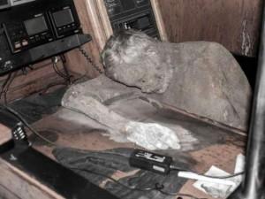"""Thế giới - Philippines: Phát hiện xác chết ngồi trong """"thuyền ma"""""""