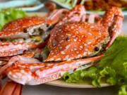 Sức khỏe đời sống - Nguy hiểm khôn lường khi ăn cua, ghẹ sai cách