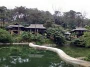Tin tức trong ngày - Không bao che vụ xây resort ở Vườn quốc gia Ba Vì