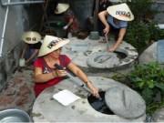 Sức khỏe đời sống - Muỗi vằn nuôi ở Nha Trang áp chế được Zika?