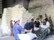 Giá cả - Giá gạo Việt Nam bằng gạo Thái Lan
