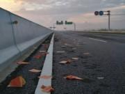 Tin tức trong ngày - UB ATGT quốc gia đề nghị bỏ tục rải vàng mã trên đường