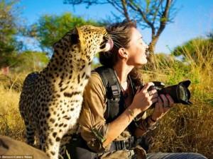 Thế giới - Ảnh: Người đẹp liều mạng làm bạn với động vật hoang dã